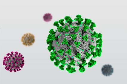 Coronavirus Bluthochdruck Herzschmerzen